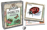 Professor Noggin's Insects and Spiders